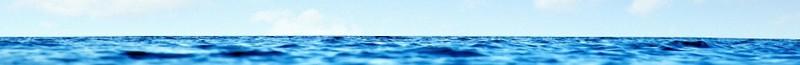 cropped-horizon5.jpg